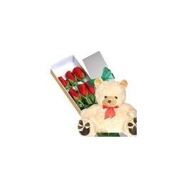 6 Rosas Rojas y Oso de Peluche