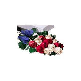 Caja de 12 Rosas Combinadas