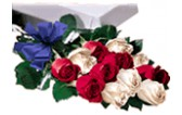 Caja de 24 Rosas Combinadas